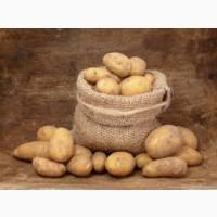 Продам картофель оптом из Беларусии