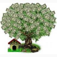 Guarantee loan contact us