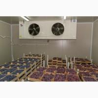 Услуги по хранению и предварительному охлаждению