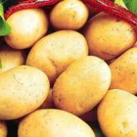 Картофель 5