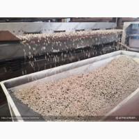 Дробилка семян подсолнечника